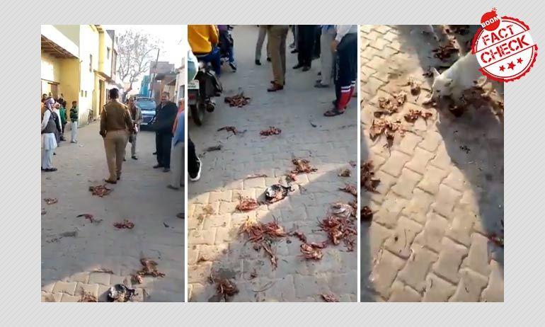 मंदिर में मांस फेंके जाने वाले साम्प्रदायिक दावों को यूपी पुलिस ने किया ख़ारिज